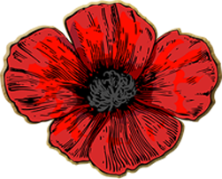 VAJEX Poppy - Donations